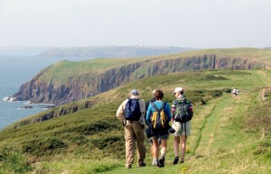 On the Caldey Island coast path